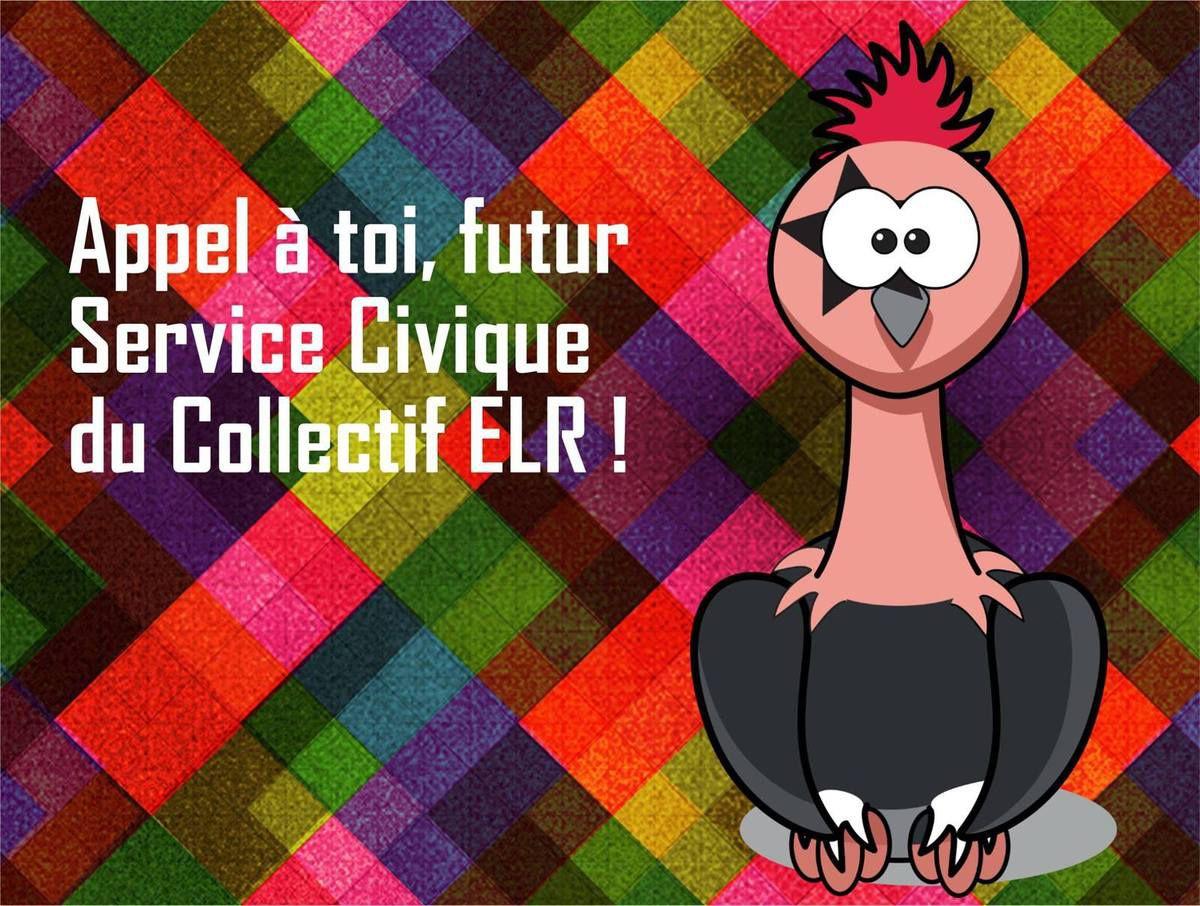 WANTED : le Collectif est à la recherche d'un nouveau volontaire en Service Civique !