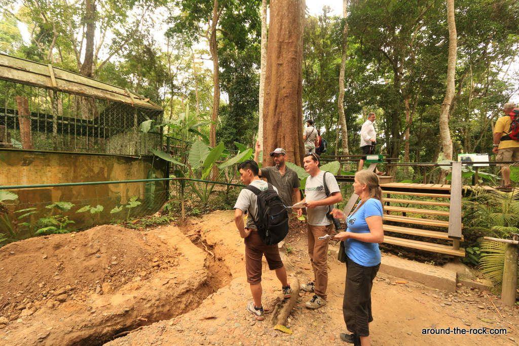 Photos prises au centre de Tat Kuang Si au Laos