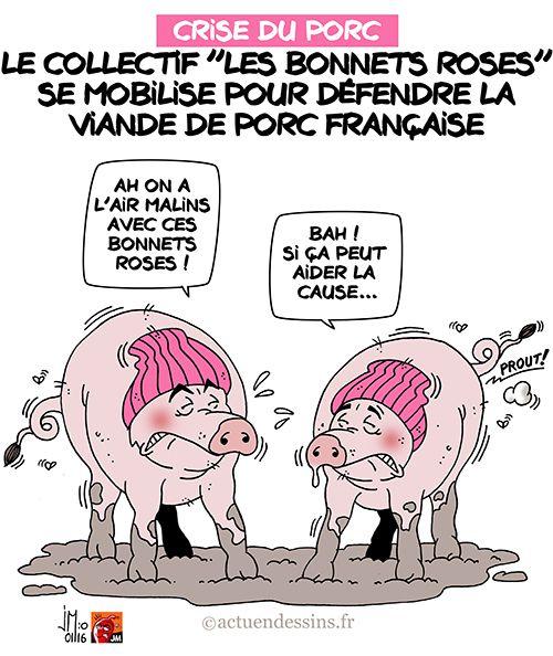 Crise du porc : «Les Bonnets Roses» en révolte !