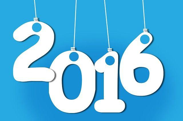 Bilan 2015, Projets 2016 !