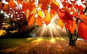 adesso si, è autunno
