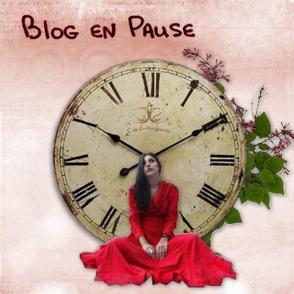 Blog en pause!