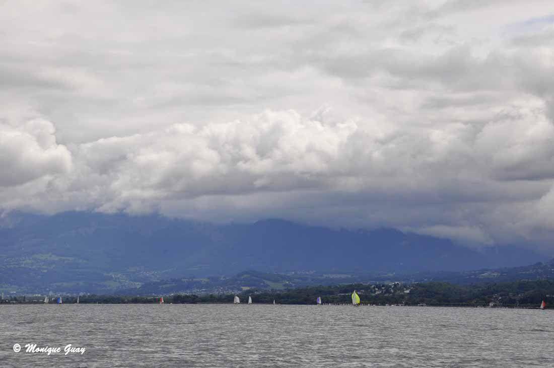 De nombreux voiliers naviguent: un sport très répandu.
