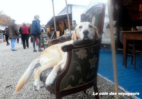 Mon escapade à Bordeaux