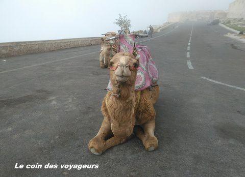 De Toulouse à Agadir avec EasyJet