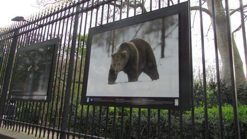 Une très belle expo photos sur les grilles du Jardin du Luxembourg à Paris