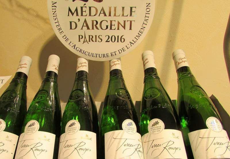 Oenotourisme dans l'Hérault : Randonnées dans les vignobles de Montagnac