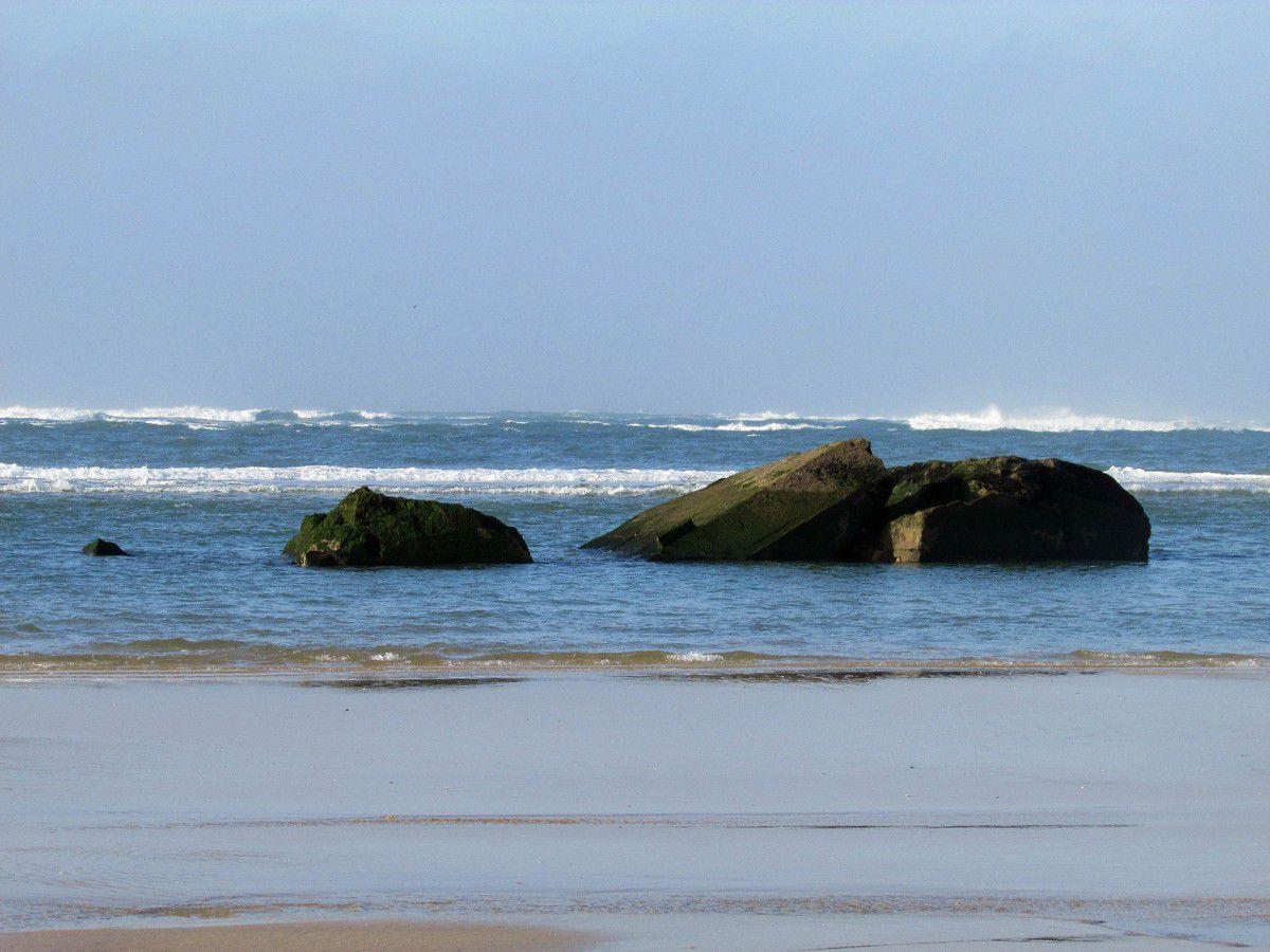 #EnFranceAussi - La belle plage de la Pointe du Cap Ferret