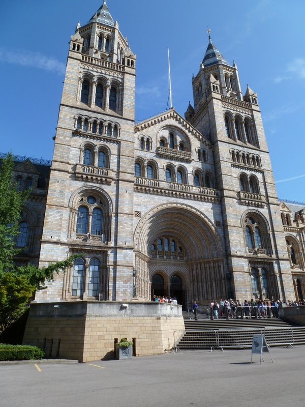 Londres:natural history museum