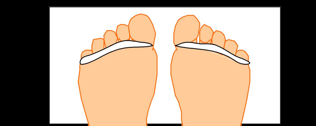 Retrouvez dans cet album toutes les photos des fonctions et organes en correspondance sur le pied