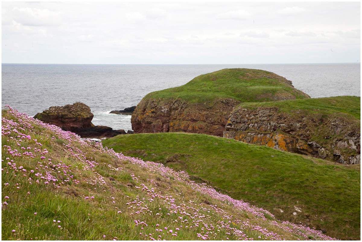 Paysages écossais
