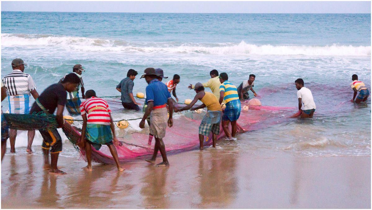 Sri Lanka - Les pêcheurs