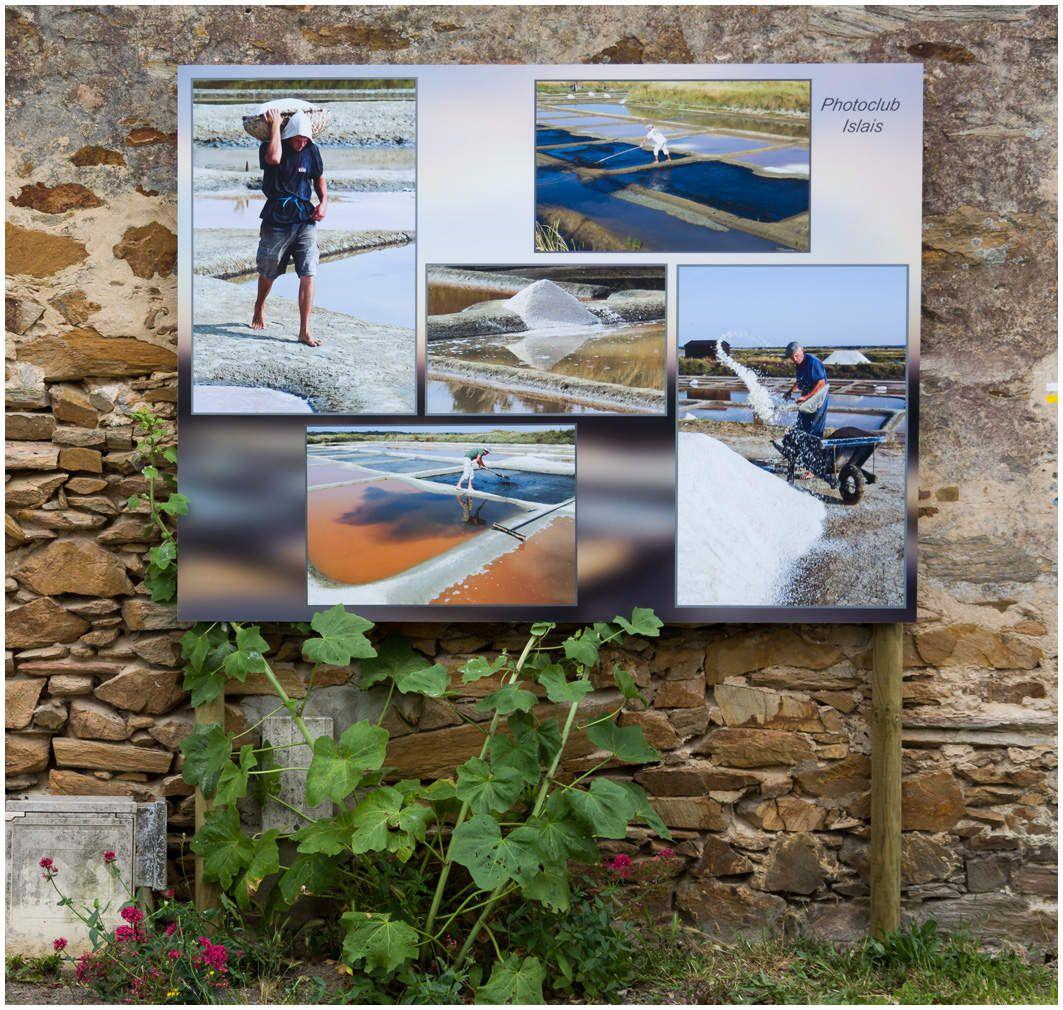 Festival Photo à ciel ouvert - Ile d'Olonne