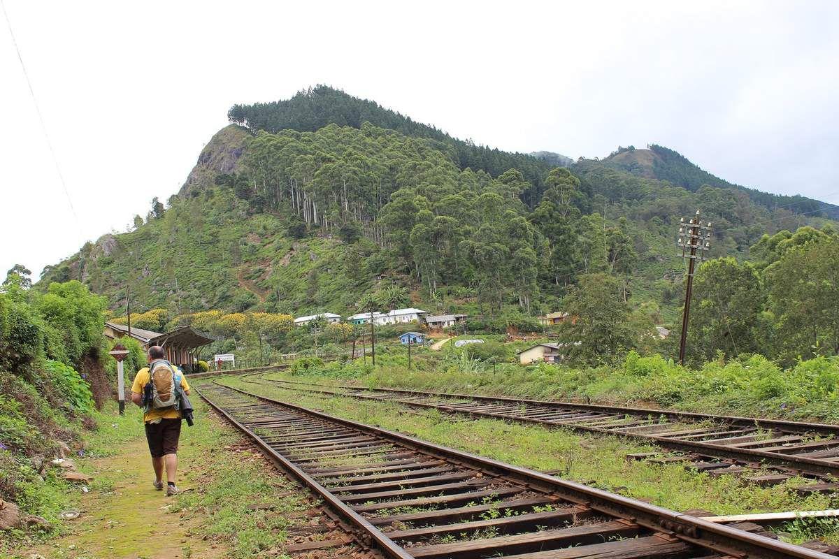 Un seul train est passé, 9 kilomètres de balade sur la voie...