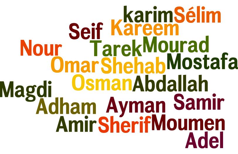 Je cherche un prenom de garcon musulman