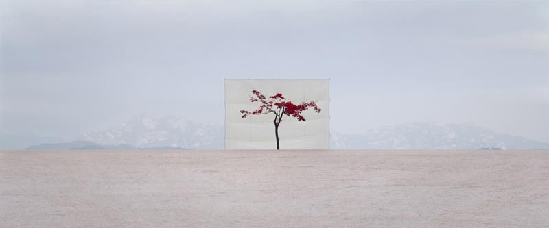 Photographie Myoung Ho Lee