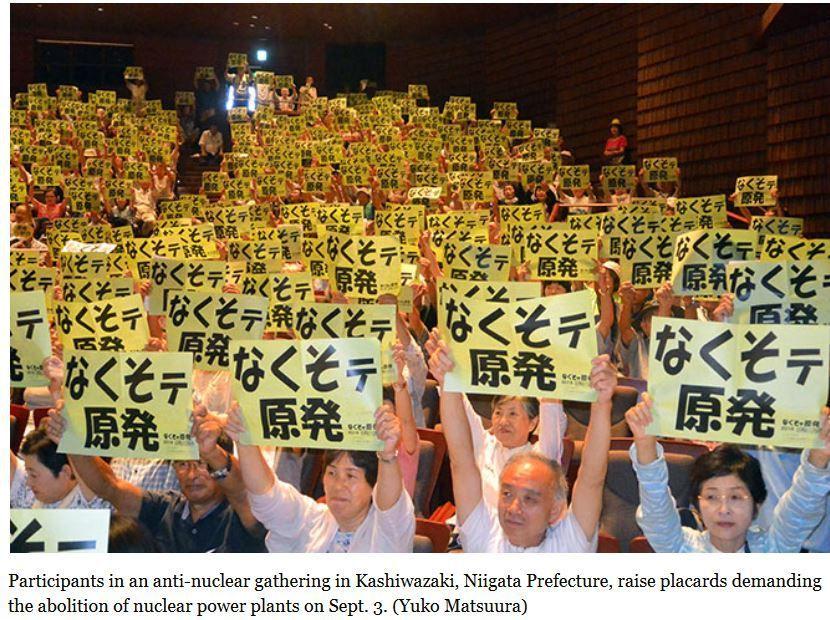 Protestors in Niigata