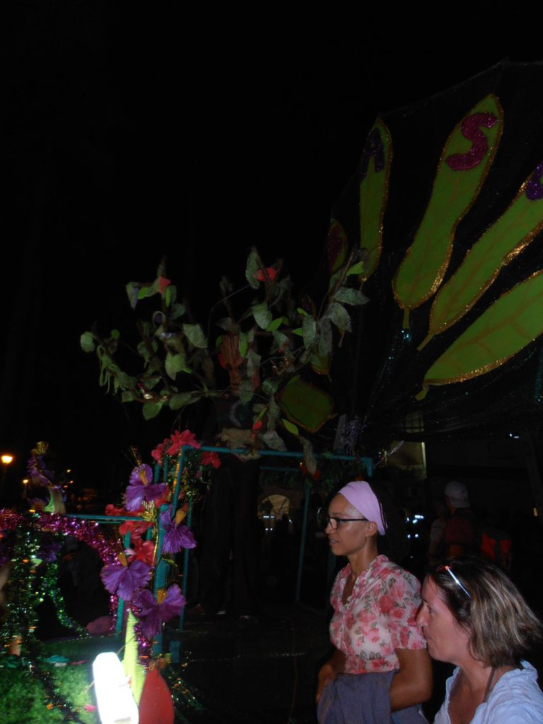 Carnaval à Cayenne !!