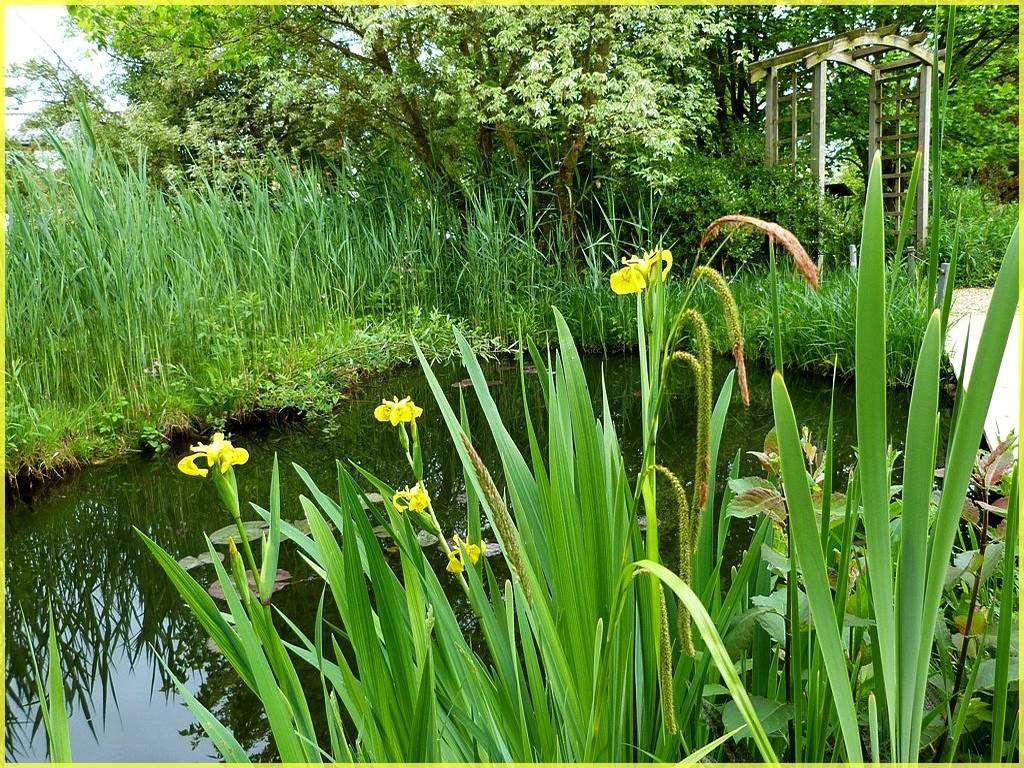 Jardins Aquatiques.