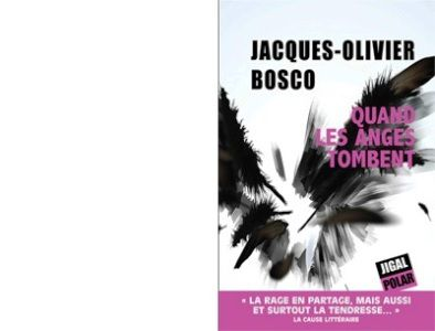 Jacques-Olivier BOSCO : Quand les anges tombent.