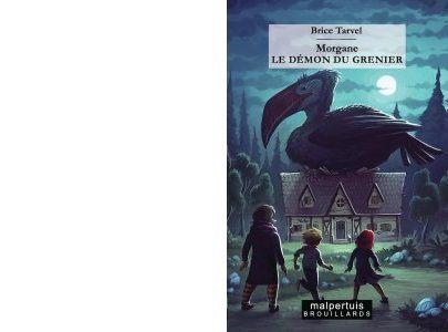 Brice TARVEL : Le démon du grenier.