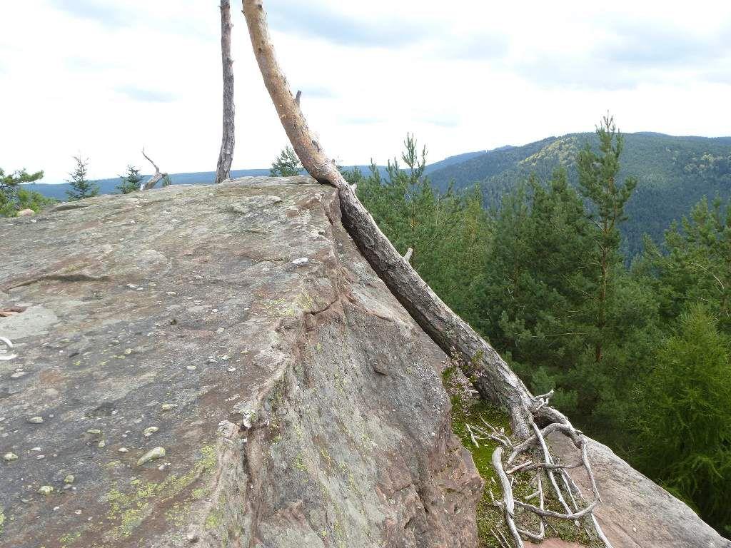 Mon tout dernier coup d'œil, sur le mythique massif du Schneeberg.