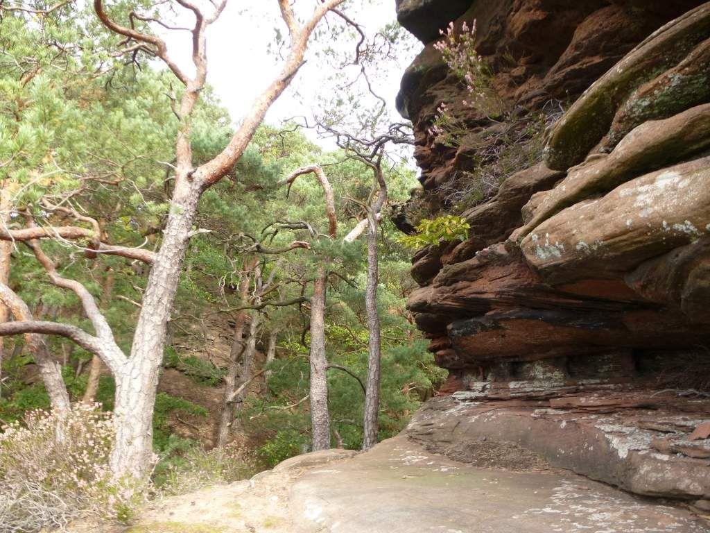 Voici l'étroite corniche rocheuse, m'ouvrant l'accès au fameux point de vue ...
