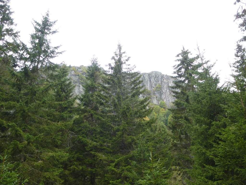 Le bouclier granitique du Tanet, parvient à émerger, au-dessus de l'épaisse forêt résineuse.