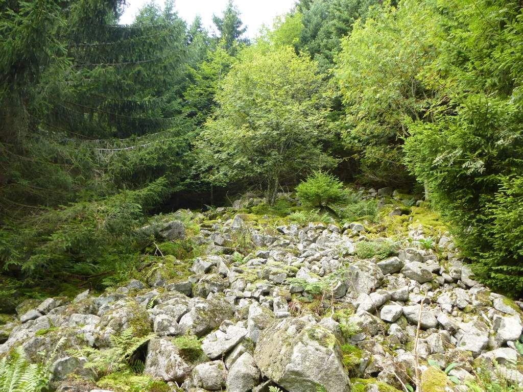L'un des pierriers granitiques de Montabey, sis aux abords du sentier des roches.