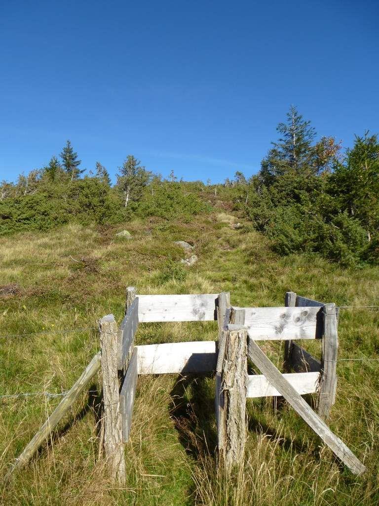 Un petit portillon, donne accès, à la sublissime chaume sommitale dénudée du Steinmauer ...