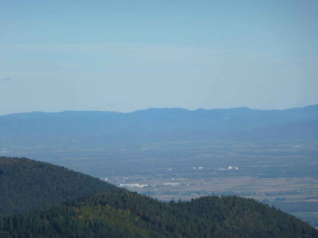 La plaine rhénane de Barr, vue au-delà du Kienberg (801 m).