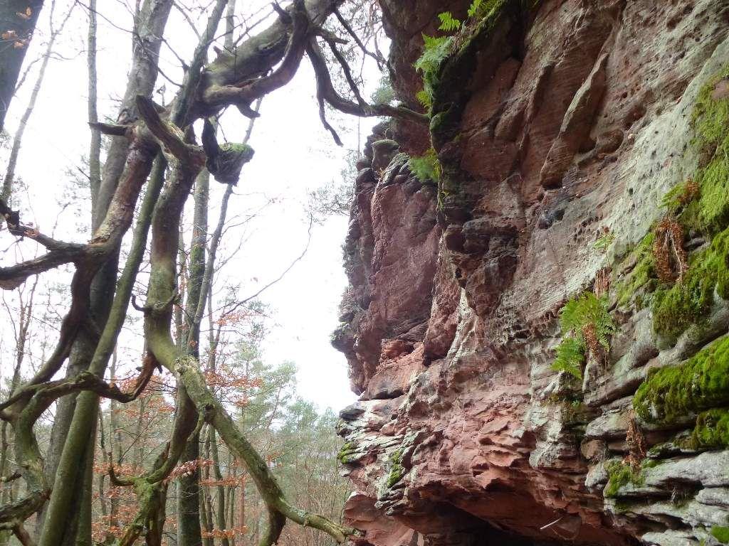 La hauteur maximale de ce promontoire, atteint quelque 35 mètres : pas mal !
