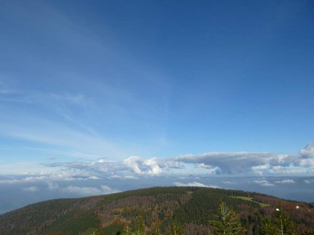 Les premières hauteurs de Freiburg-in-Breisgau, parviennent à surgir de la purée de pois ...