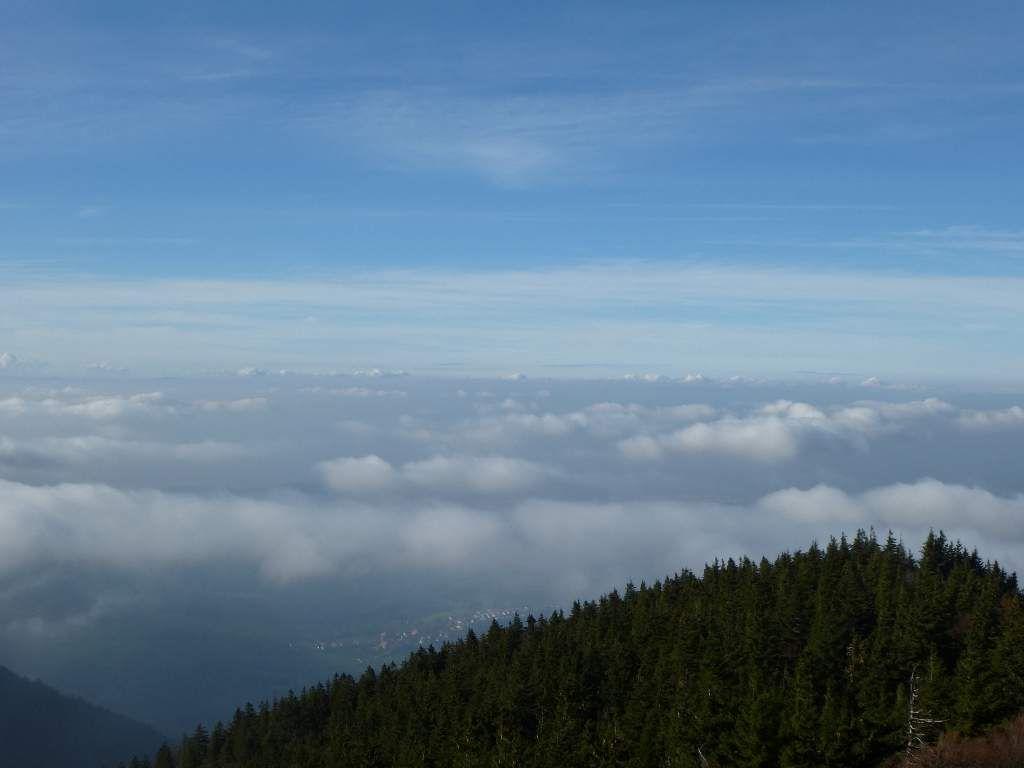 Un tel panorama ne me laisse jamais insensible, même ici, dans la Haute Forêt-Noire ...
