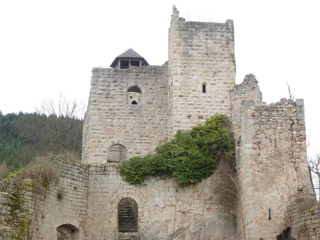 Vue générale, de la partie supérieure du château du Bernstein (logis seigneurial + donjon).