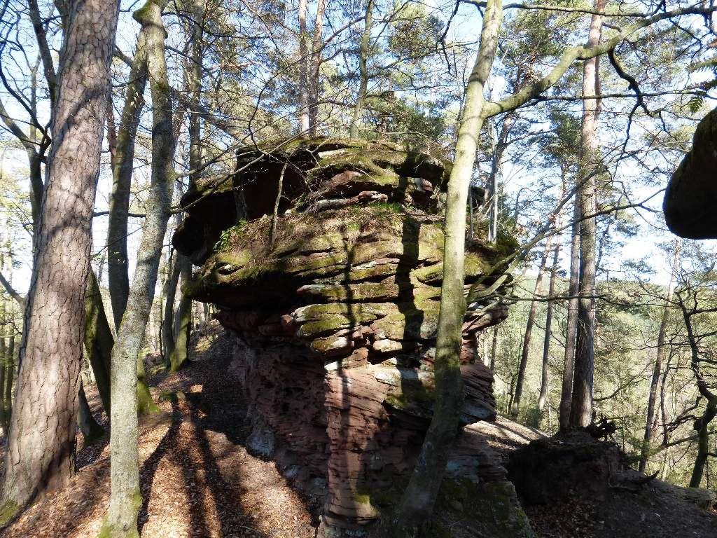 Le premier rocher de la petite arête de l'Arnsbergfels est en vue ...