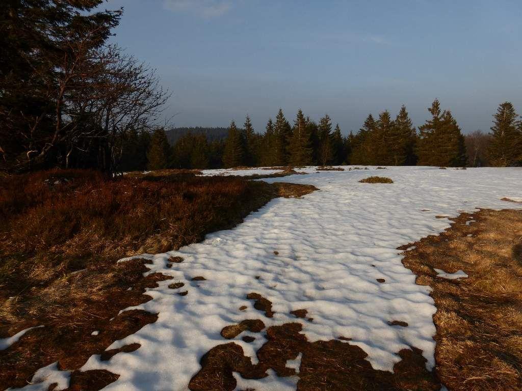 La neige a de plus en plus de mal à tenir, radoucissement météorologique oblige !