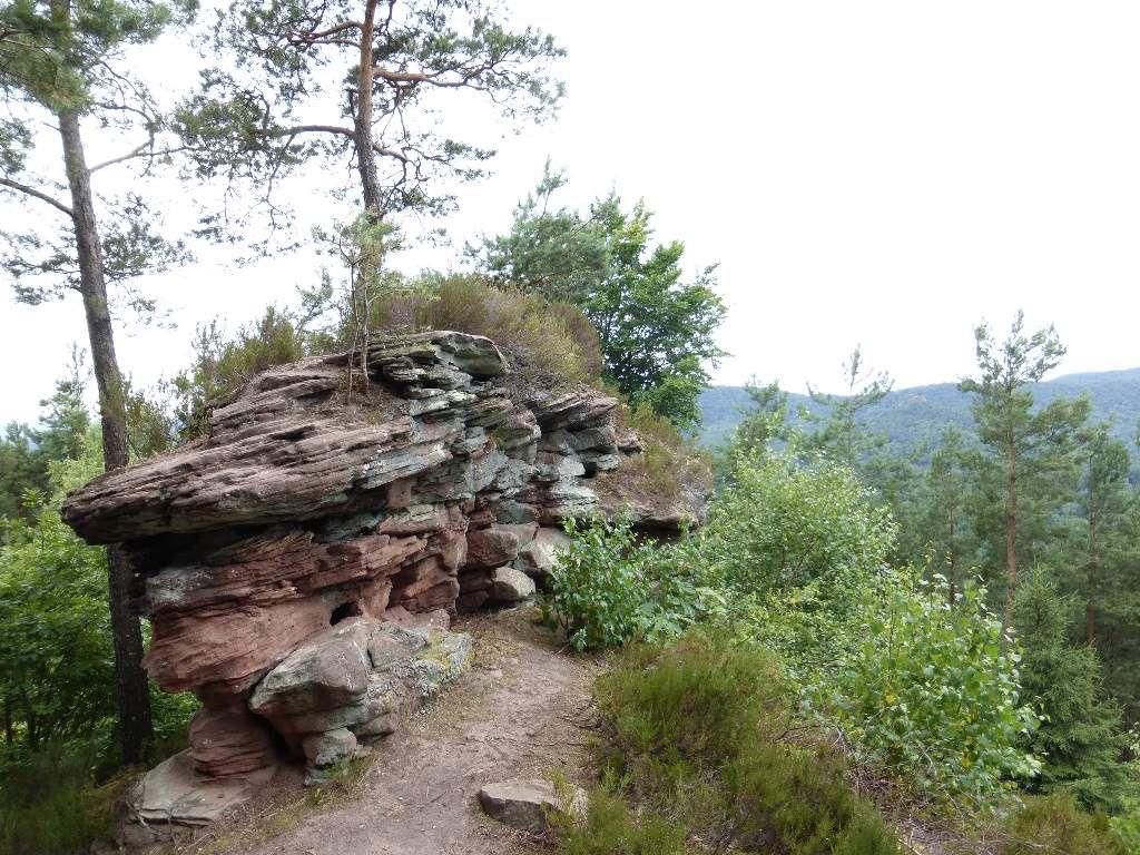 Le site du Häuselstein, pointe à très précisément, 422 mètres d'altitude.