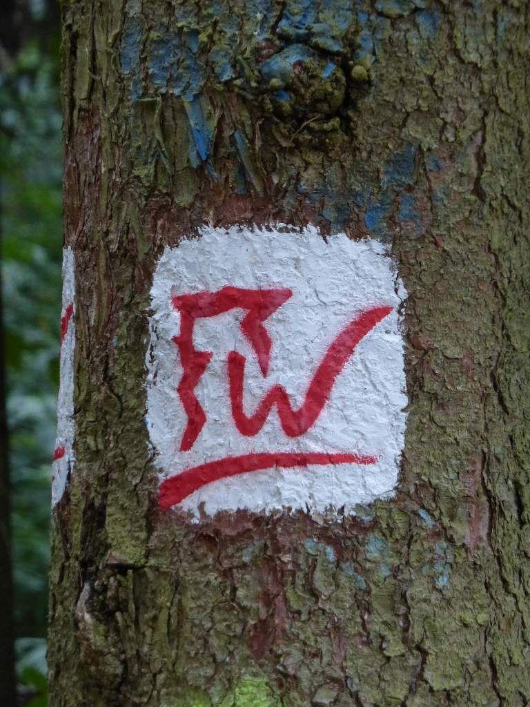 C'est ce symbole là, que je vais devoir suivre : c'est celui du sentier circulaire du Kochelstein.