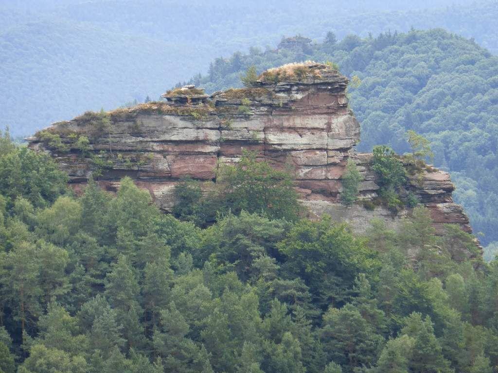 Le Haselstein au premier plan, le Rödelberg juste derrière (ban communal de Vorderweidenthal, pour lui).
