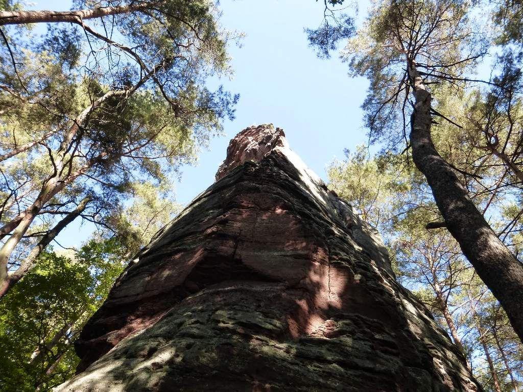 La hauteur totale du site, dépasse les 50 mètres : remarquable, pour un rocher vasgovien !