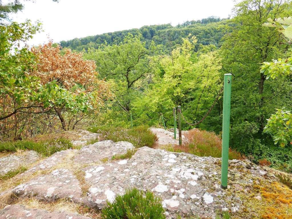 Le rebord sommital Est, autorise une courte échappée, en face, sur le Kaestenberg (alt. 372 m).