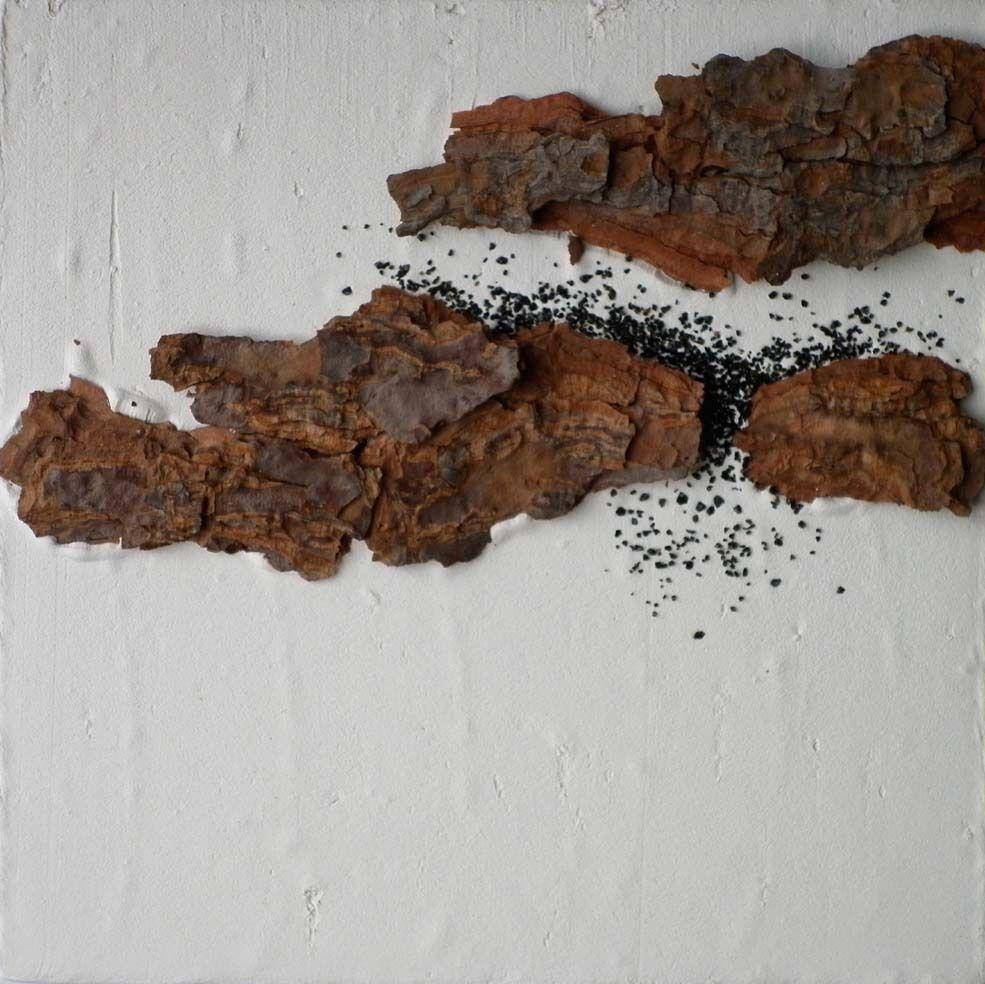 Tableau-choses réalisés à partir de matériaux trouvés dans la nature en Pic Saint Loup - Dim: 25x25 cm, Technique mixte (plâtre, pierres, terre, végétaux...)