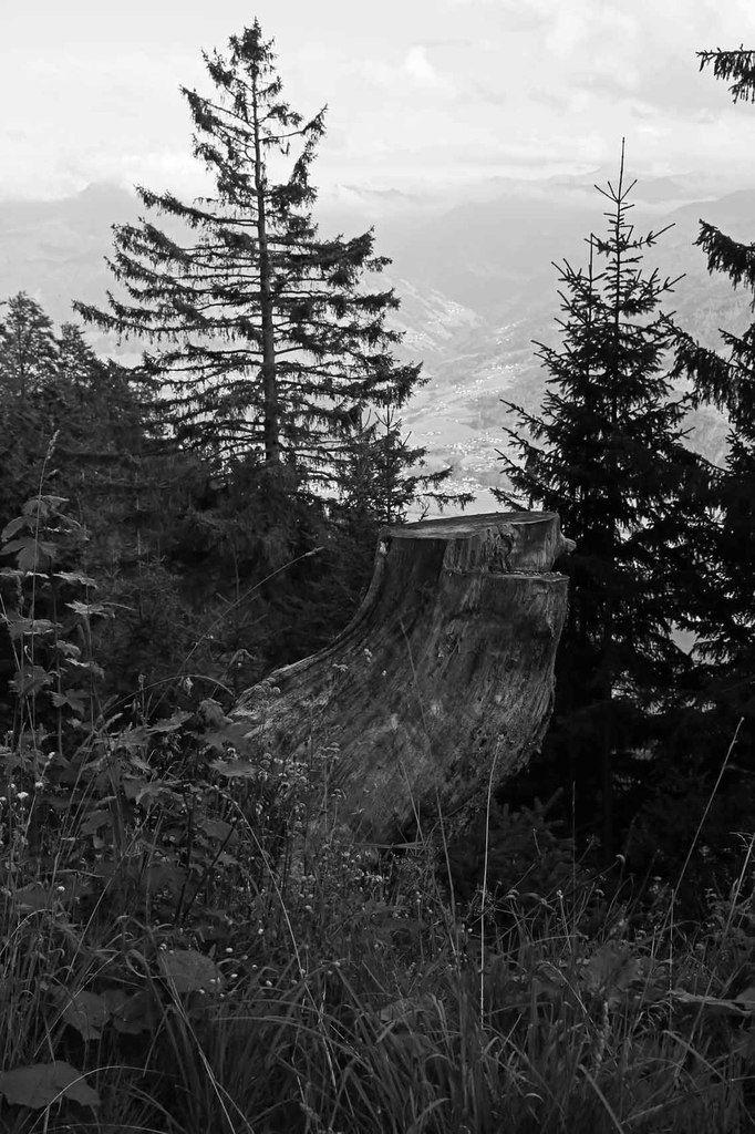 Environs d'Innsbruck
