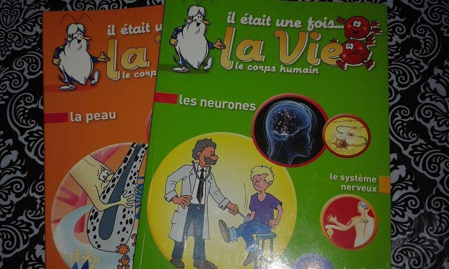 Dons de livres pour la bibliothèque