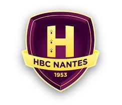 Qui veut assister au match du H.B.C.Nantes en VIP?