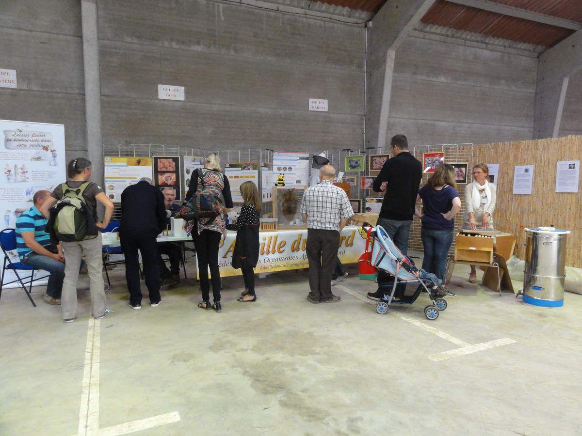 Apinord Dunkerque fête les 40 ans du Bois des Forts