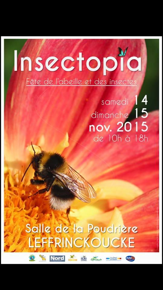 Insectopia 2015