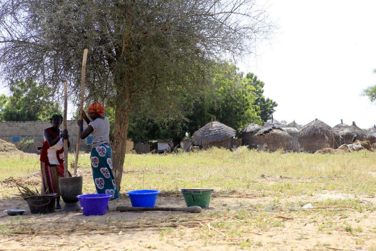 Scène de vie au bord d'un village