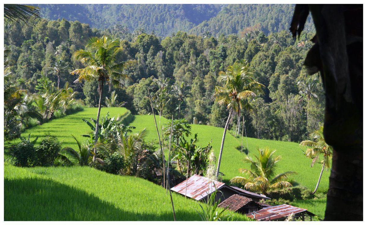 Les paysages verdoyants sont grandioses et se prêtent à des randonnées inoubliables.